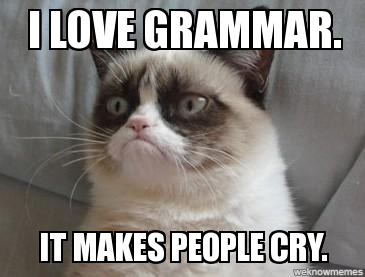 I love grammar GRUMPY CAT
